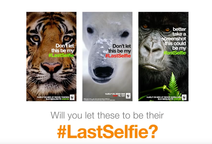 WWF Last Selfie Snapchat Content Marketing